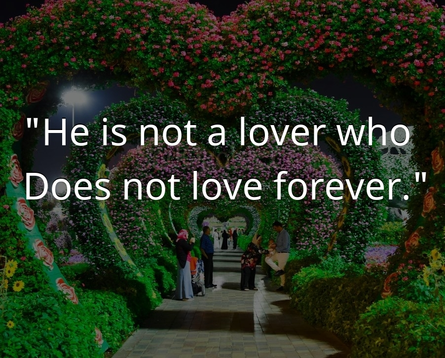 He is not a lover who - Sad Love Quotes