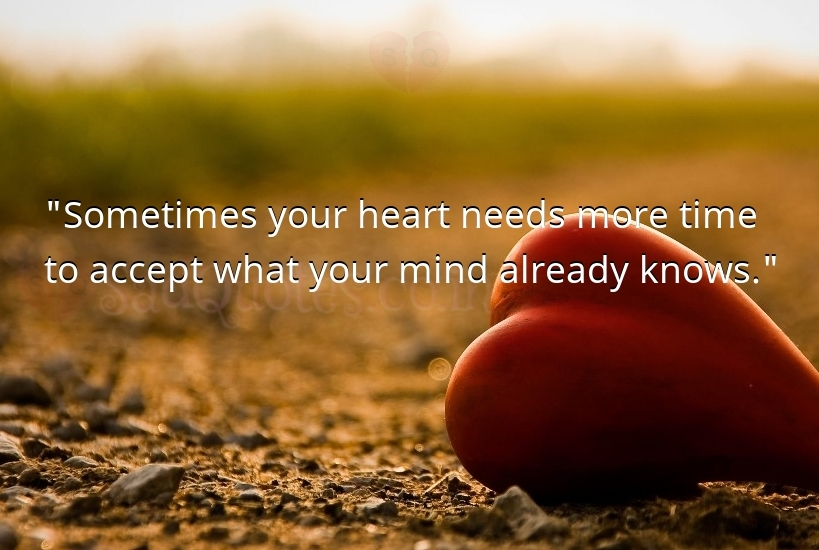 Sometimes your heart needs more time - Sad Love Quotes